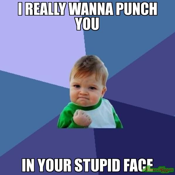 4e52b80707f8f891e1cd17695cd916a4 i really wanna punch you in your stupid face watch it,Your Stupid Meme