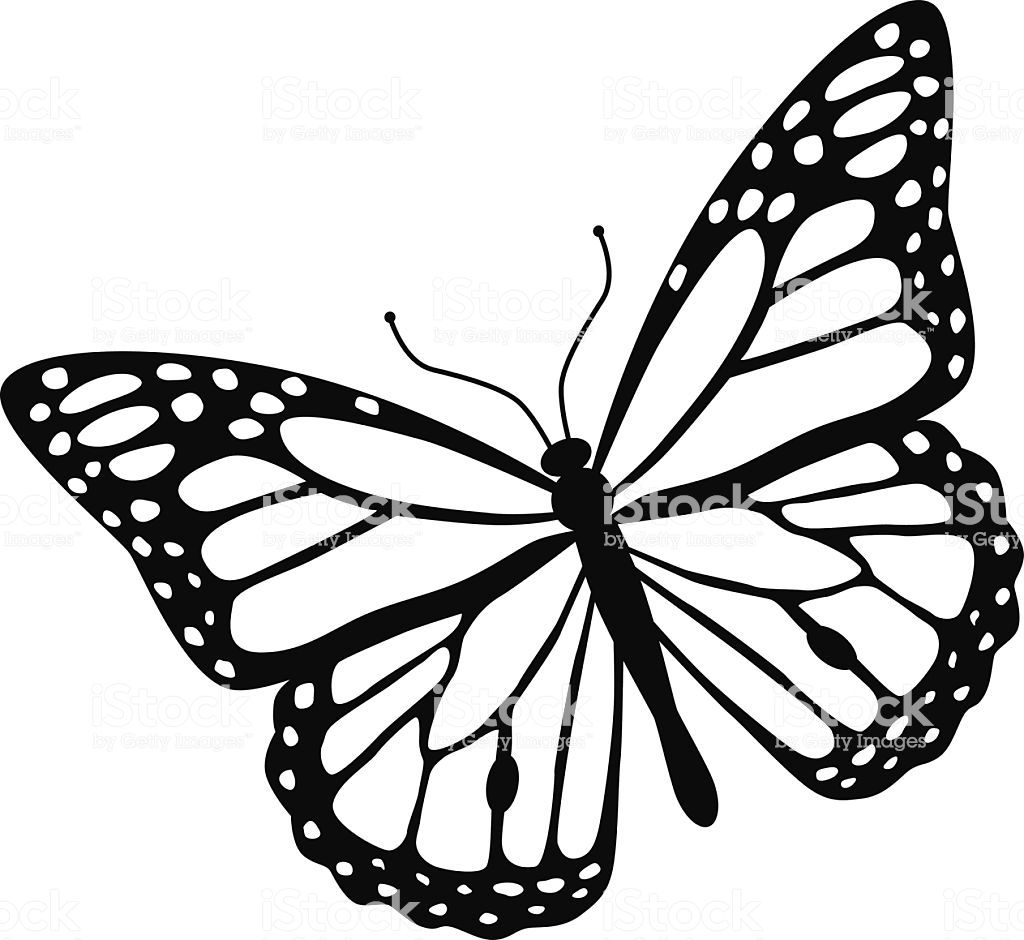 A Vector Illustration Of A Monarch Butterfly In Black And