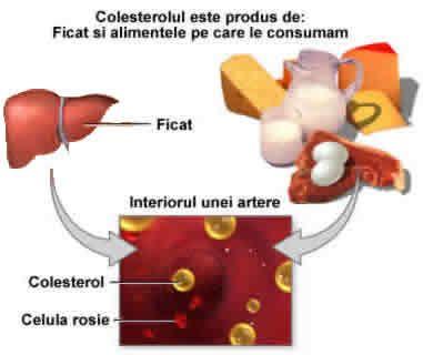 alimentos con mas colesterol