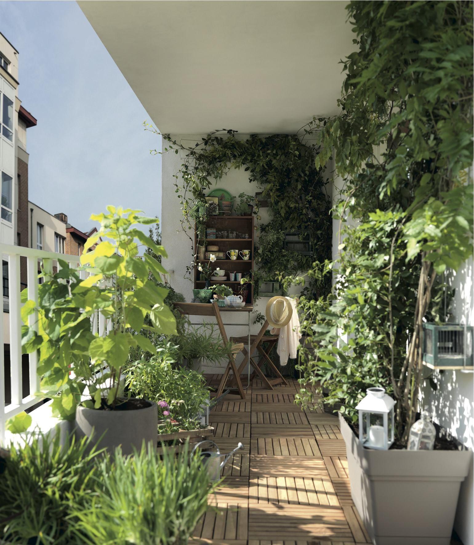 Un Petit Coin De Verdure Au Mileu De La Ville Jardin Terrasse