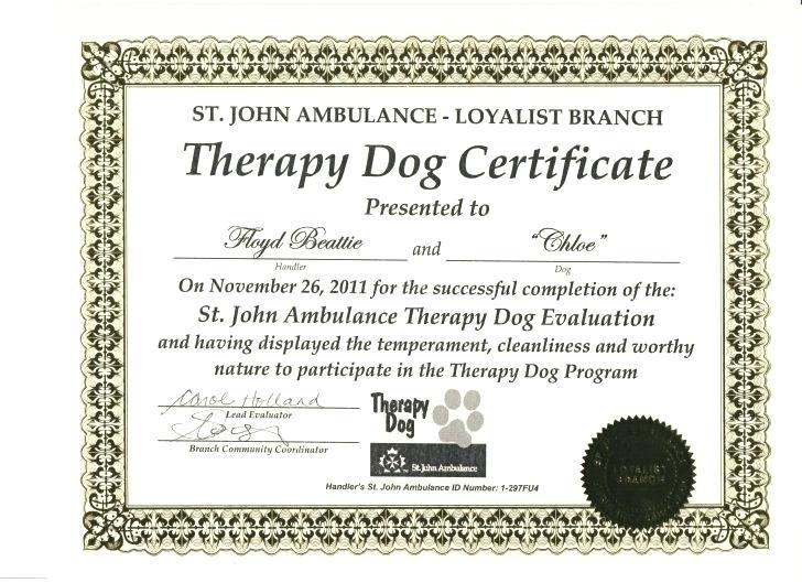 Service Dog Certificate Template 4 Templates Example Templates Example Certificate Templates Service Dogs Certificate Of Achievement Template