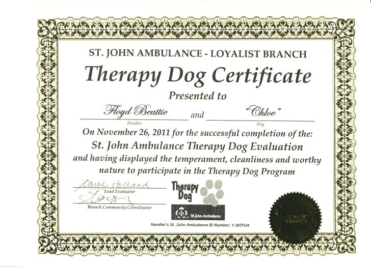 service dog certificate template 4 templates example. Black Bedroom Furniture Sets. Home Design Ideas