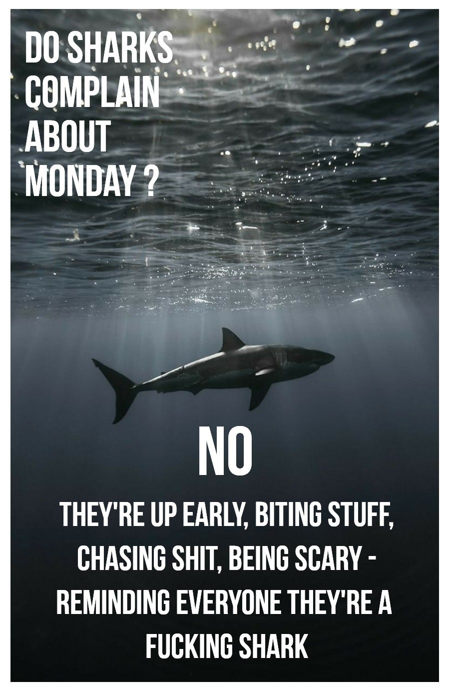 I need to hang this on my wall.. as a reminder every Monday