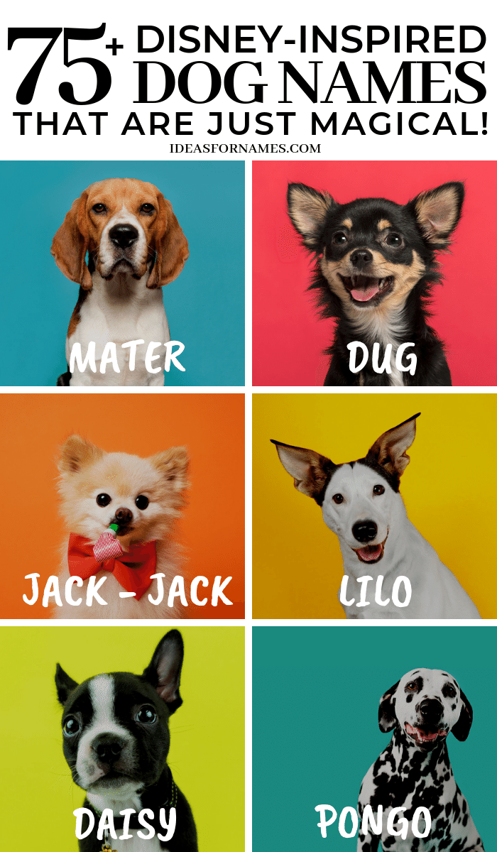 75 Disney Inspired Dog Names That Are Absolutely Magical Disney Disneypets Disneylover Disneyfan Doglover Dog Names Dog Names Disney Puppy Names