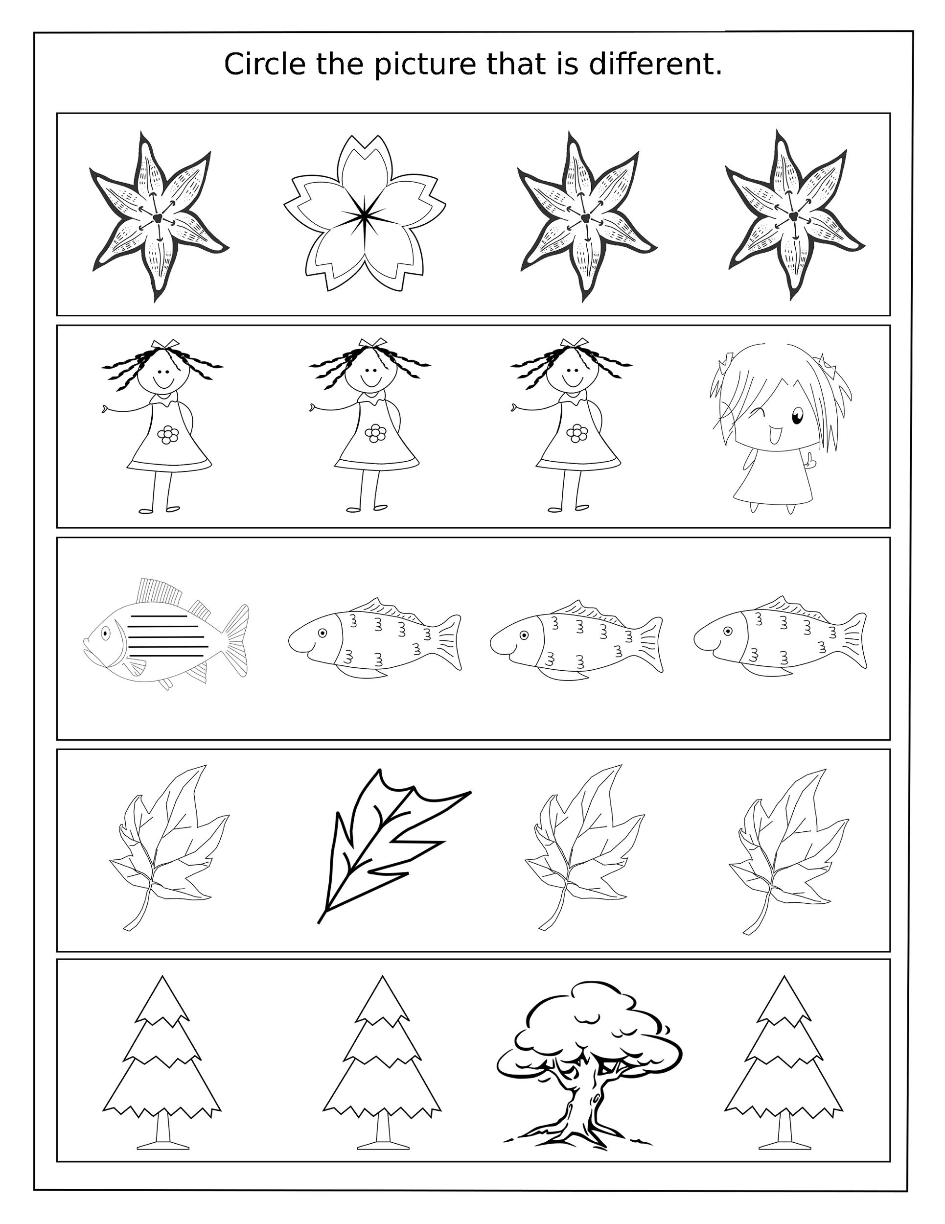 worksheet Same Different Worksheets same and different worksheets for kids kiddo shelter shelter
