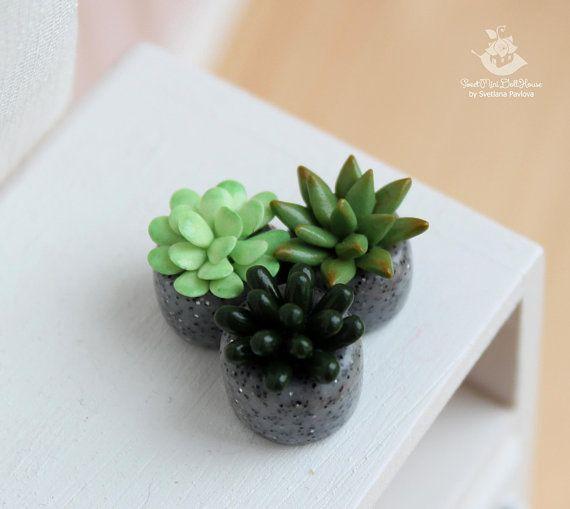 Photo of Miniature succulents in the pot. Mini Cacti. Garden. Succulents. Dollhouse Plant. The Fairy garden. Accessory