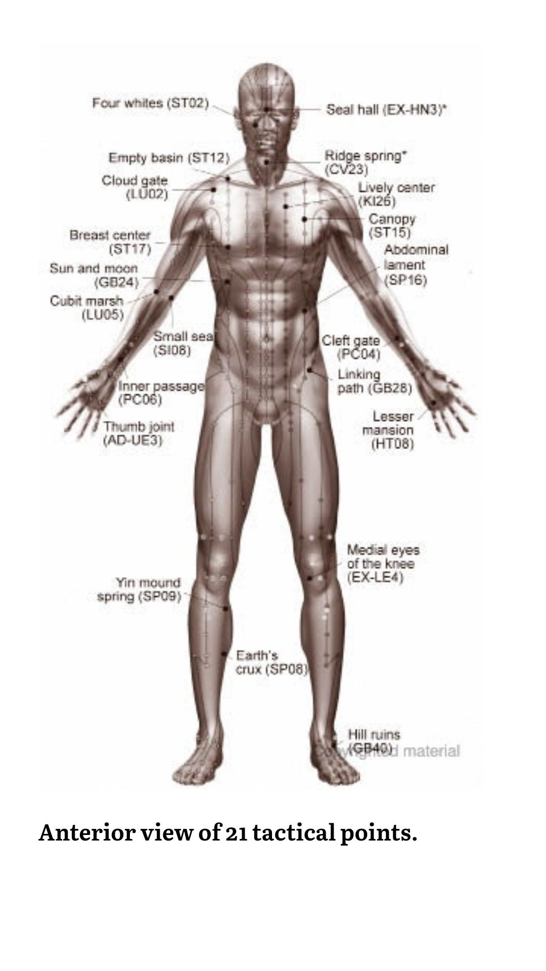 Pin On Pressure Points
