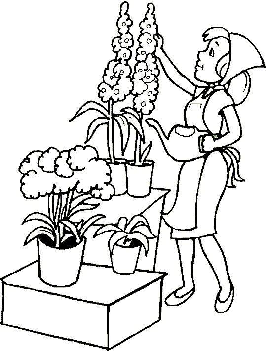 Kleurplaat Natuur Tuin 8 Thema Zaaien Planten