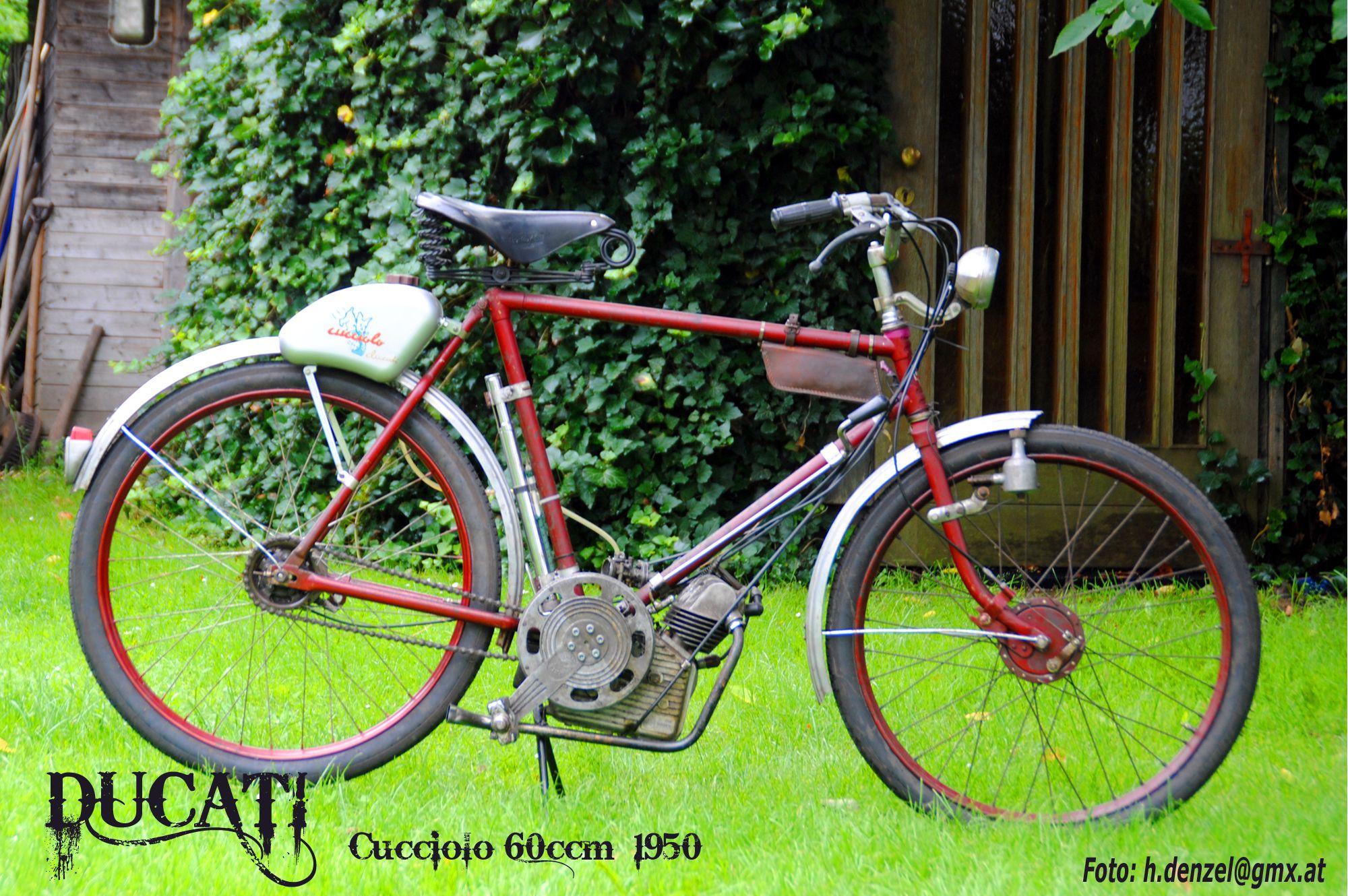 ducati cucciolo 50ccm 1950 benzinradl 39 n motorrad. Black Bedroom Furniture Sets. Home Design Ideas