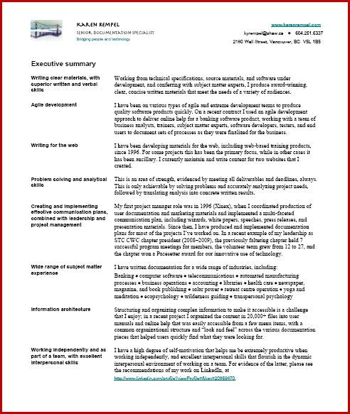 Resume Writer  Resume Executive Summary Examples