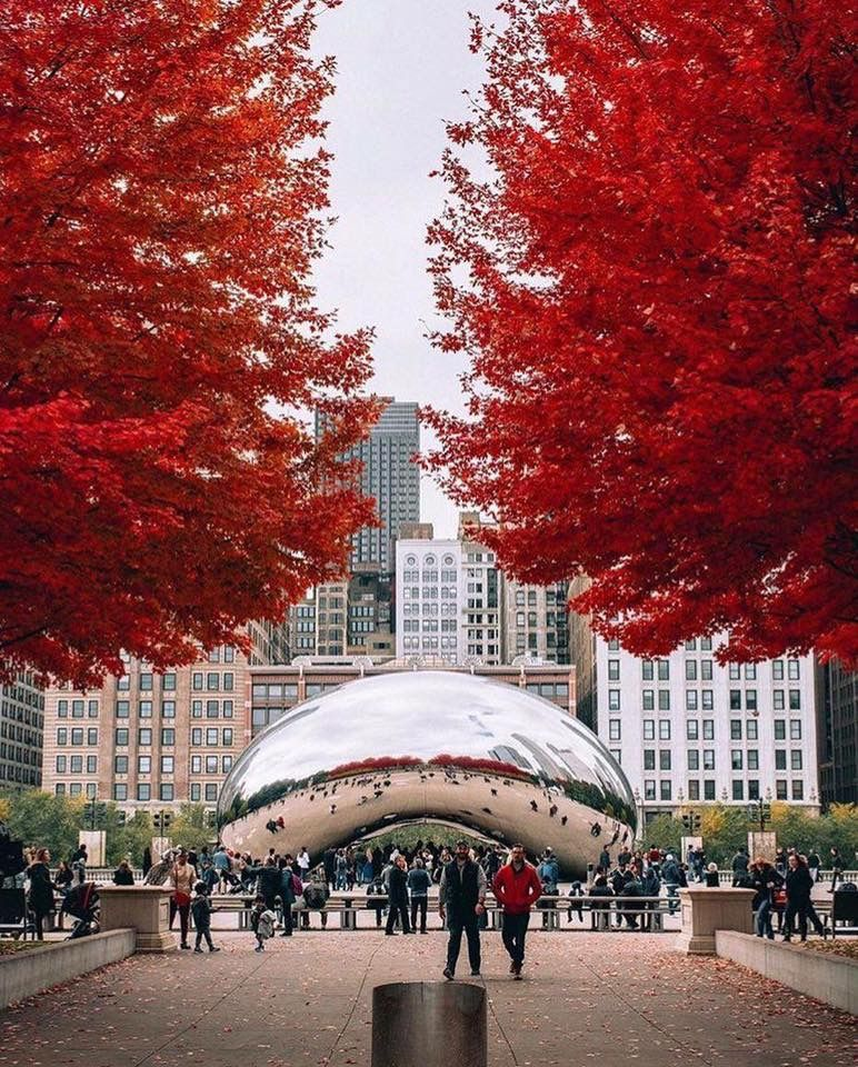 Pin By Joann Smrz On Chicago Illinois Chicago Photography