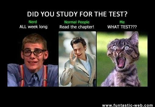 Day before test