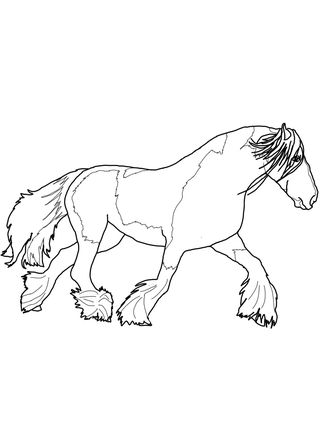 Click To See Printable Version Of Gypsy Vanner Horse