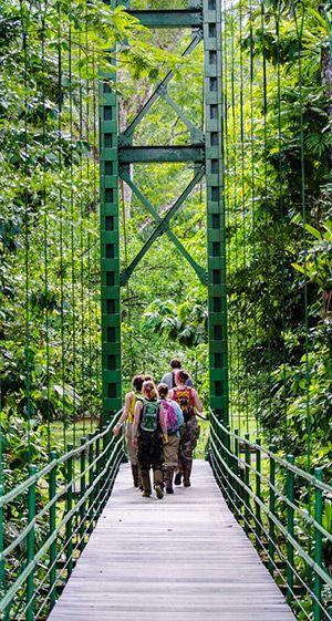 Researchers walk across bridge