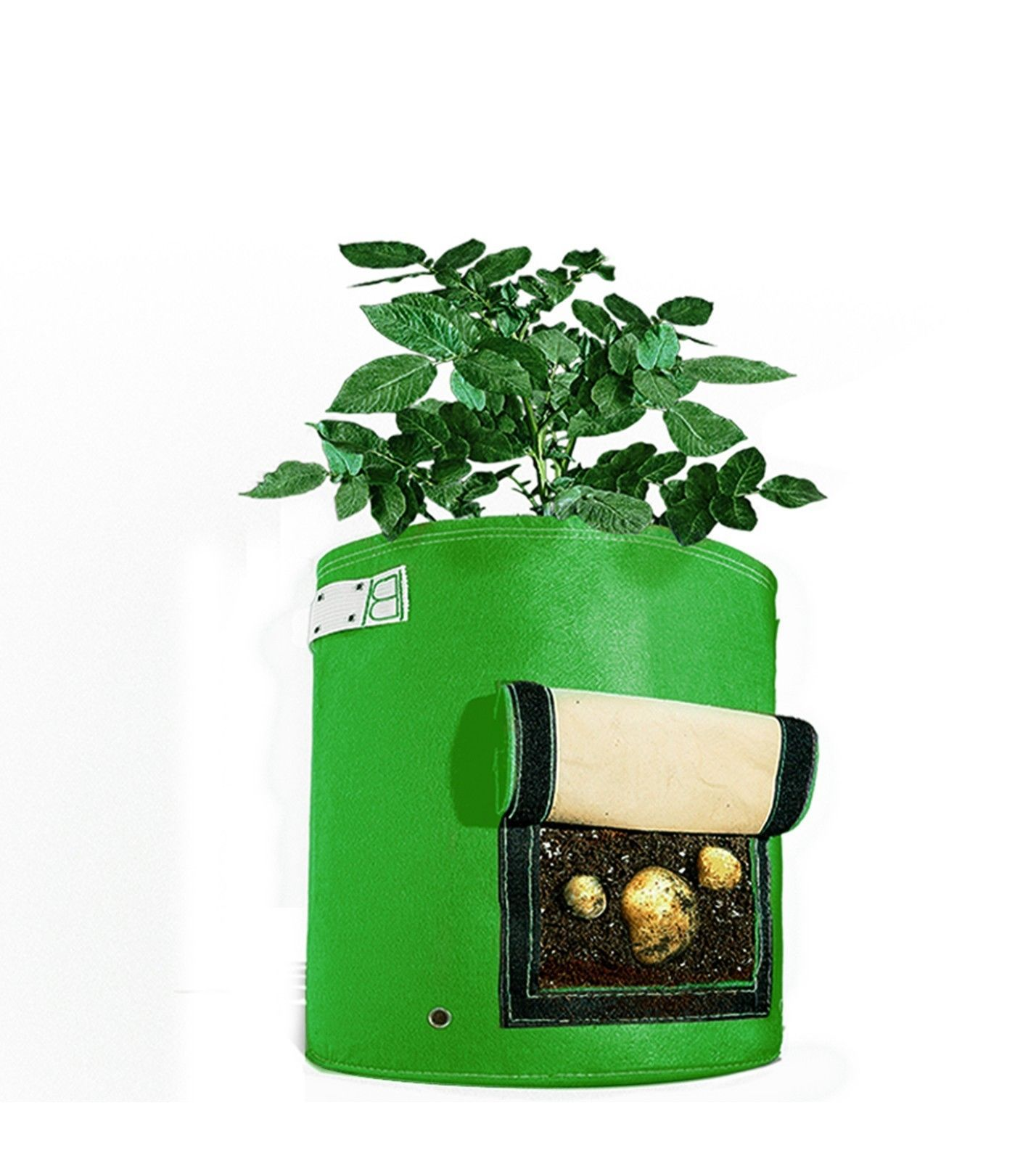 Grow Your Own Spuds Without Having to Dig Your Garden by
