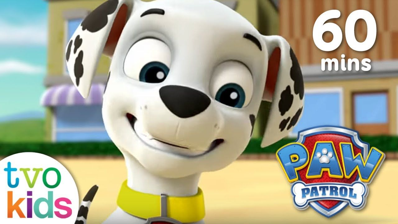 PAW PATROL Season 3- Full Episodes - 60 Minute Compilation - YouTube