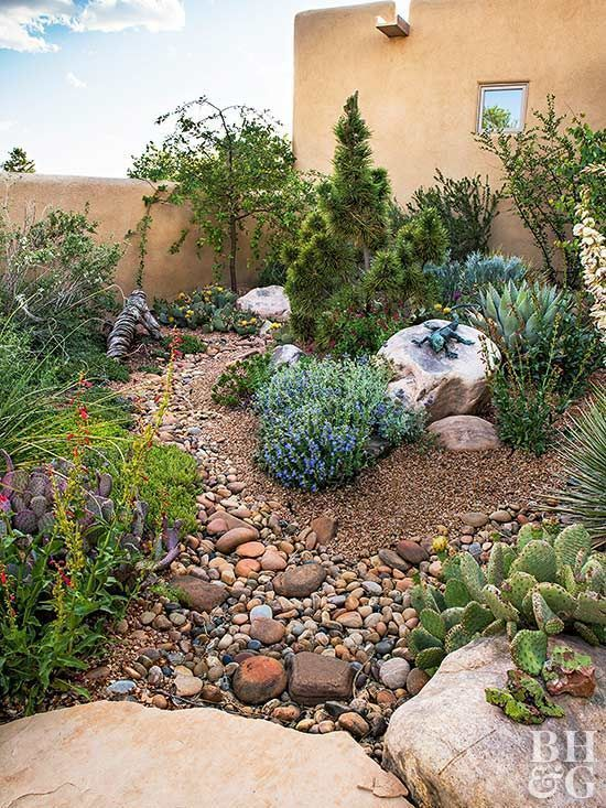 Photo of Create A Water-Wise Landscape