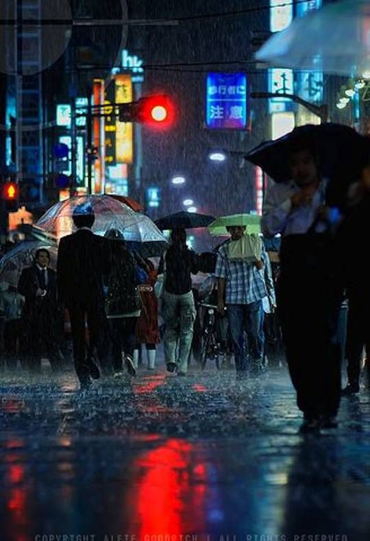 Rain Photography Rain Photography Umbrella Photography Japan
