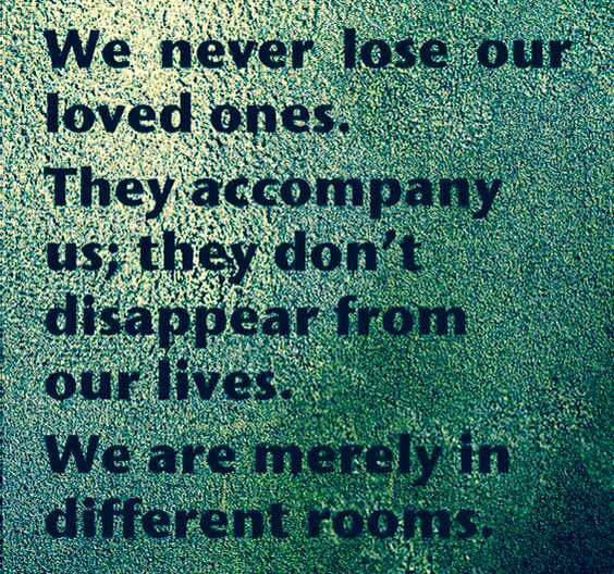 We Never ...