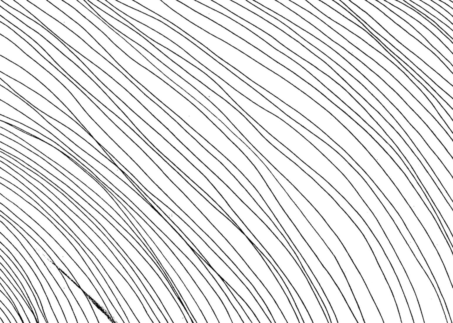 Lines, black. Feutre fin. © Noemie Devime