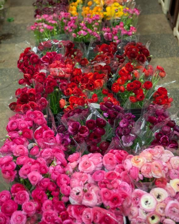 """Behind the Scenes: Shop the Flower Market with Kevin Sharkey - """"My all-time favorite flower is a carnation, but time of year makes a huge difference. In early spring, I love forsythia and tulips; in late spring, peonies get my vote. Flowers are like produce -- always better in season. Case in point: the ranunculus shown here."""""""