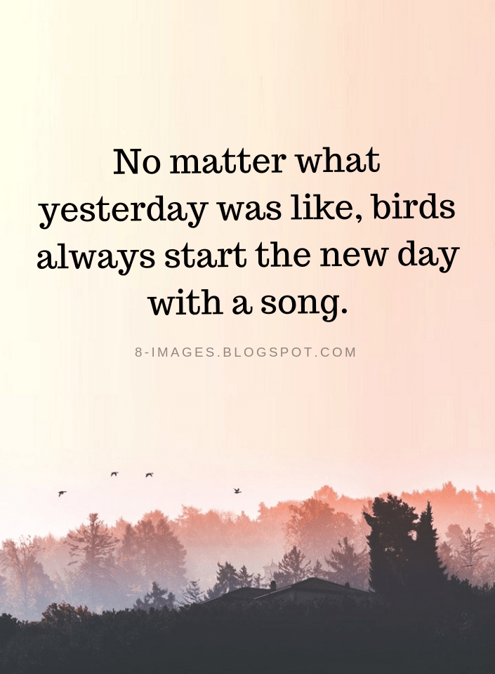 Today's A New Day Quote : today's, quote, Matter, Yesterday, Like,, Birds, Always, Start, Inspirational, Quotes, Quotes,, Singing, Stress