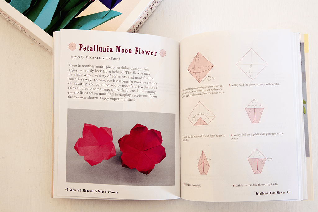 Origami Flowers By Lafosse Alexander Book Review Paper Kawaii