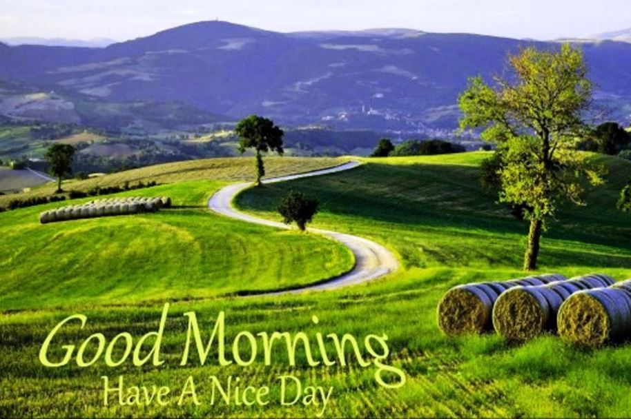 Cool Good Morning Images With Nature Good Morning Good Morning
