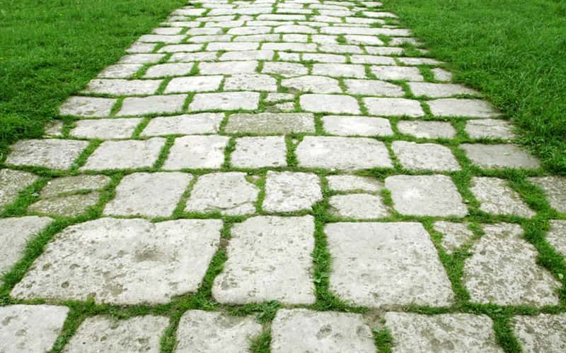 18 Stepping Stone Pathway Ideas #steppingstonespathway 18 Stepping Stone Pathway Ideas #steppingstonespathway 18 Stepping Stone Pathway Ideas #steppingstonespathway 18 Stepping Stone Pathway Ideas #steppingstonespathway 18 Stepping Stone Pathway Ideas #steppingstonespathway 18 Stepping Stone Pathway Ideas #steppingstonespathway 18 Stepping Stone Pathway Ideas #steppingstonespathway 18 Stepping Stone Pathway Ideas #steppingstonespathway