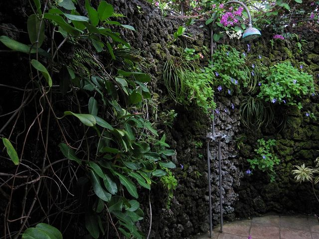 Tropical plants won't mind a little extra water from this outdoor shower.