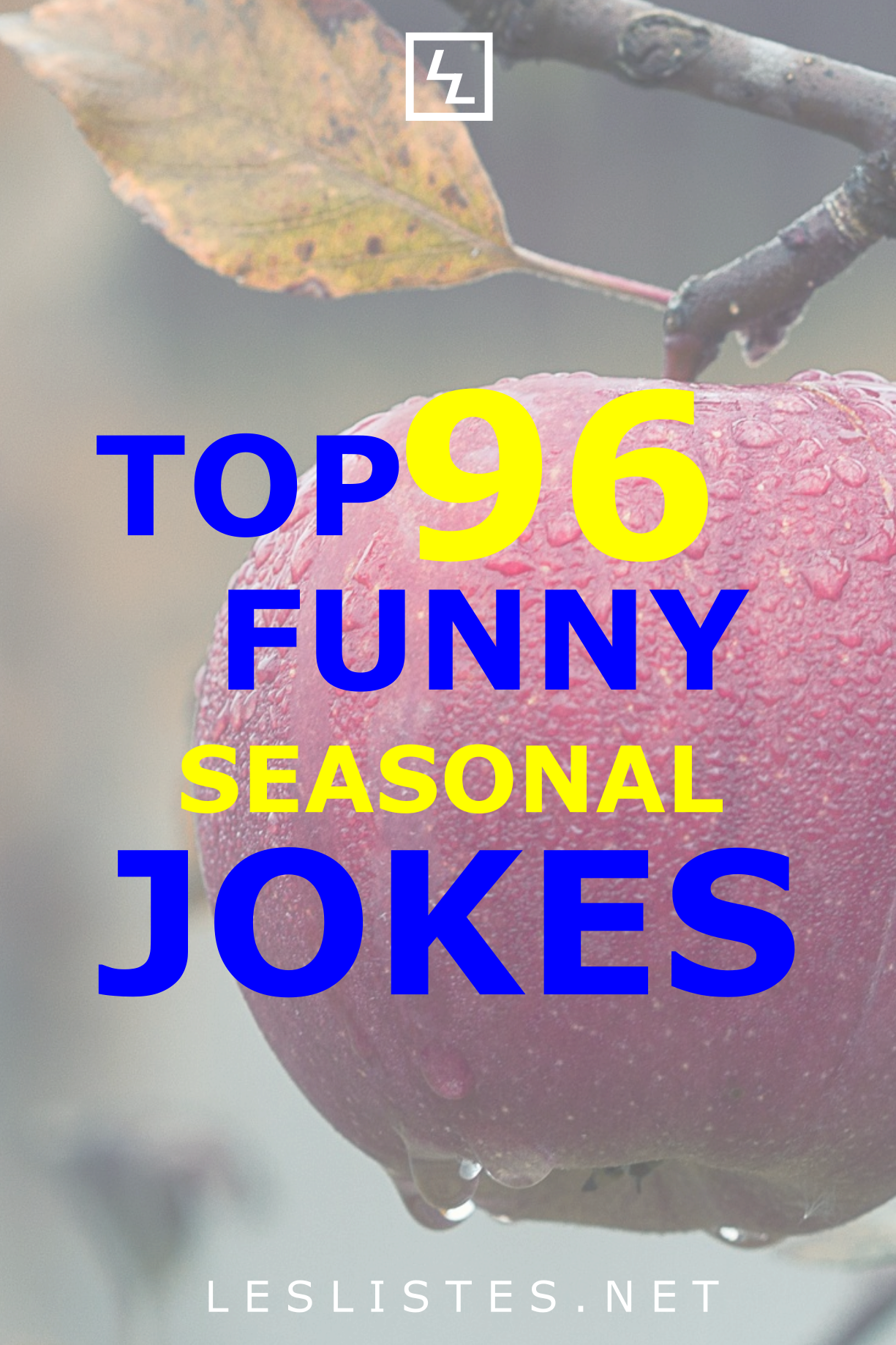 The 4 Seasons Spring Summer Fall And Winter Each Have Their Chances For Jokes Opportunities For Many Jokes Check Out The To Jokes Good Jokes Spring Jokes