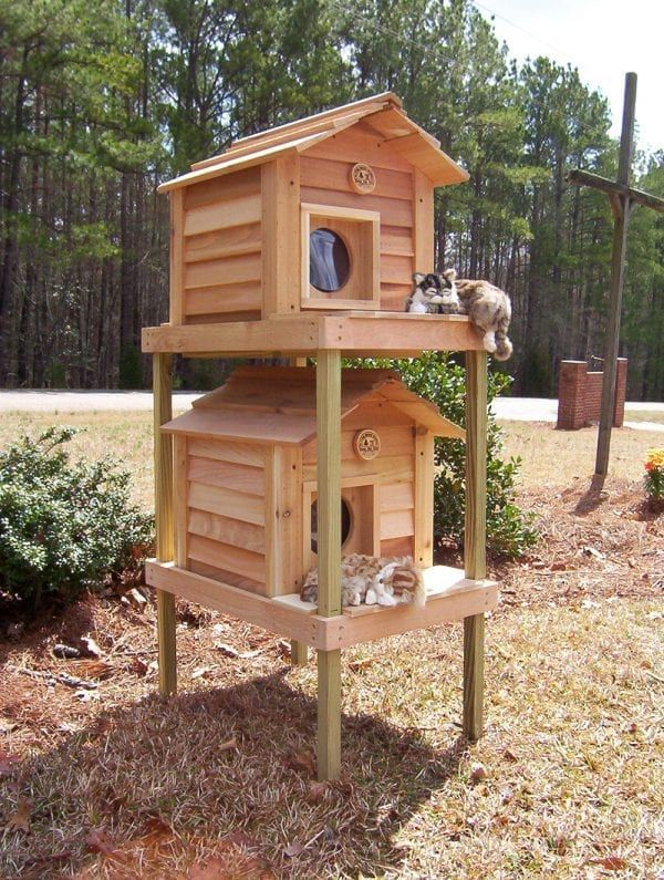 Insulated Cat House for Domestic or Feral Cats FREE