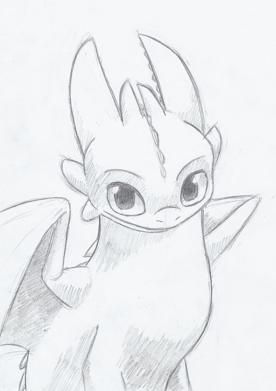 Image Result For Drawing Of Toothless The Dragon Easy Drawing