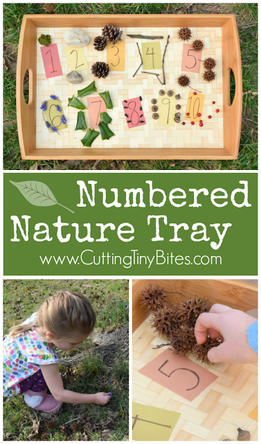 numbered nature tray paper and glue preschool elementary preschool activities nature. Black Bedroom Furniture Sets. Home Design Ideas