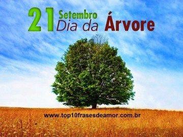 Top10 Frases De Amor Datas 71 Feliz Dia Da árvore Datas