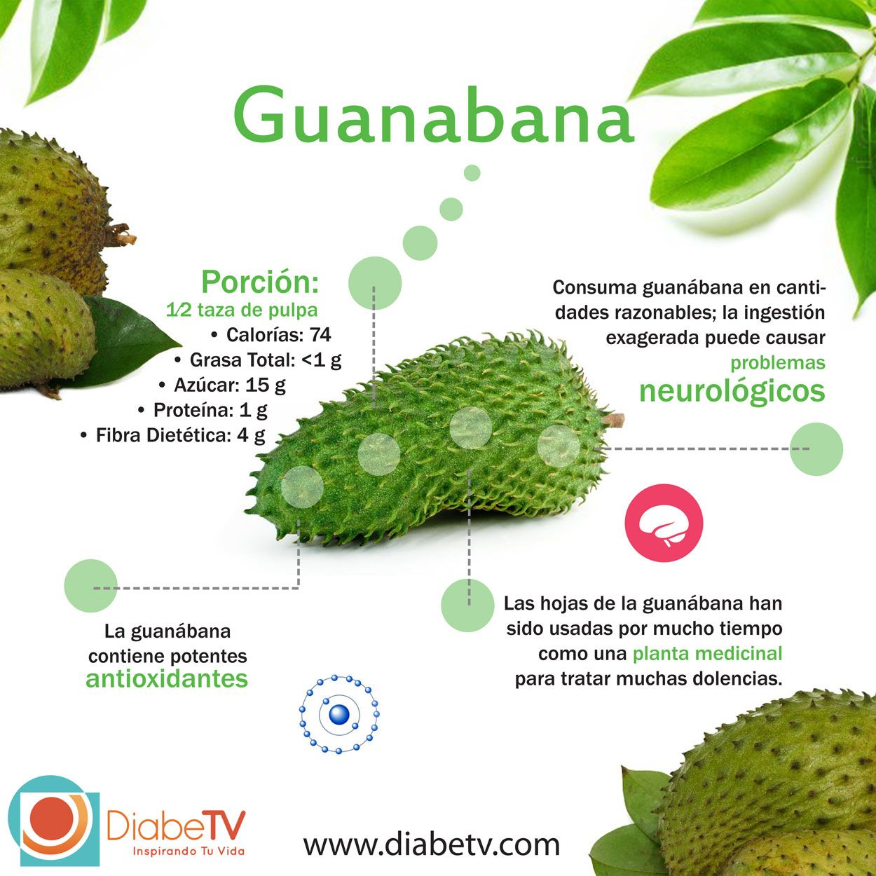 Guanabana para la diabetes y el cancer mi diabetes for Combinaciones y dosis en la preparacion de la medicina natural