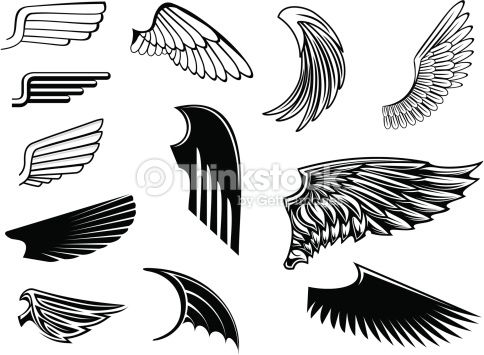set of bird wings for heraldry design bird wings angel wings vector heraldry design bird wings angel wings vector