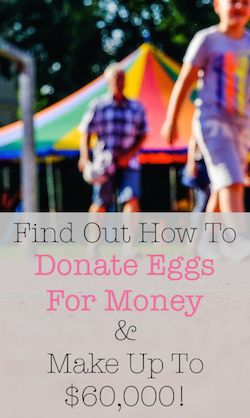 How To Donate Egg For Money