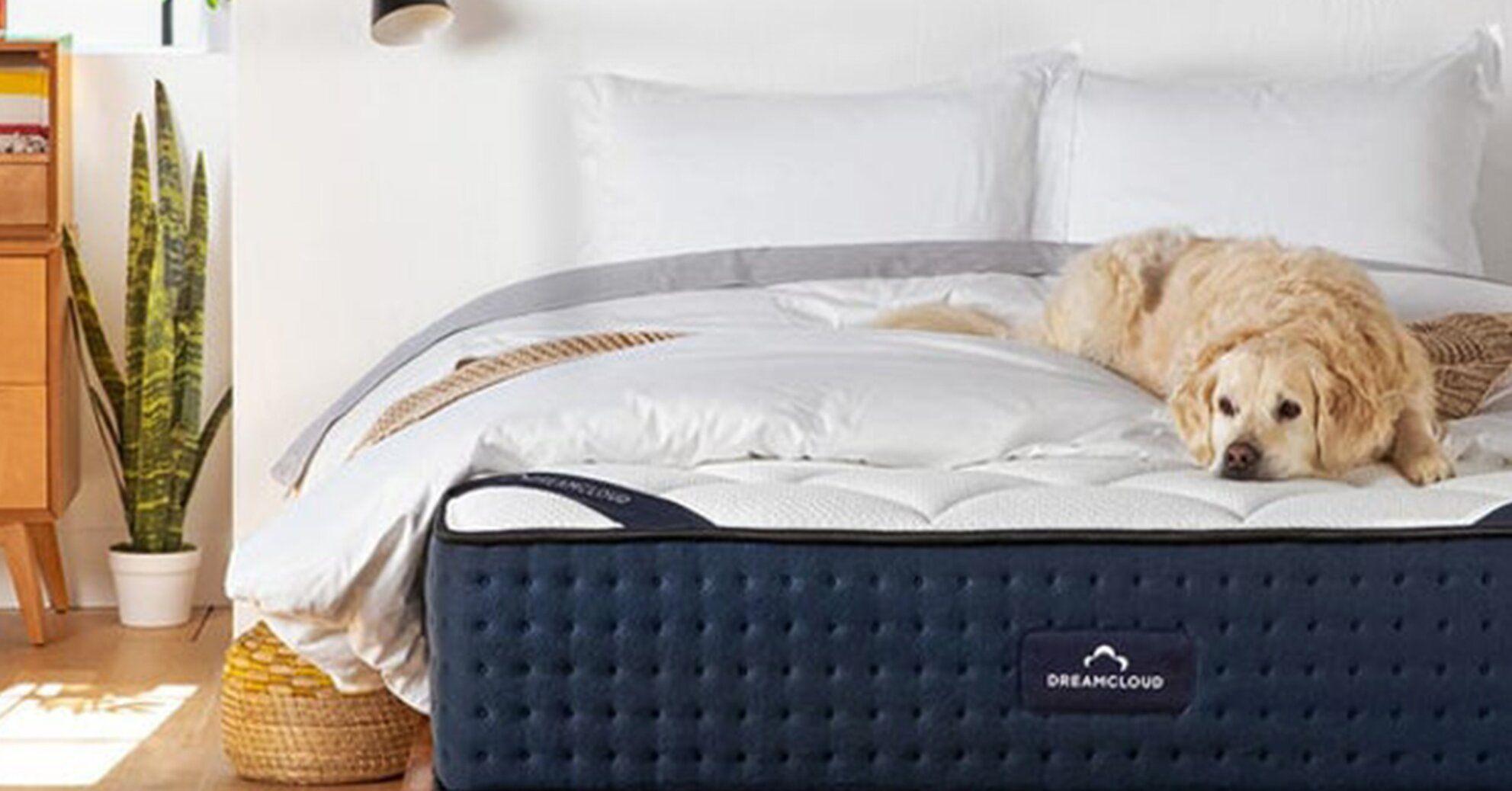 Get A Better Night S Sleep With The 10 Best Mattresses For Side Sleepers In 2020 Best Mattress Side Sleeper Best Cooling Mattress