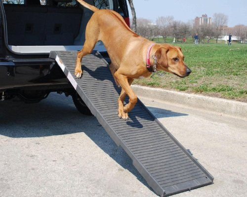 I just used this last weekend  PetSTEP Folding Pet Ramp Gray follow this link click here http://bridgerguide.com/petstep-folding-pet-ramp-gray/ for much more detail about it. Thanks and please repin if you like it. :)
