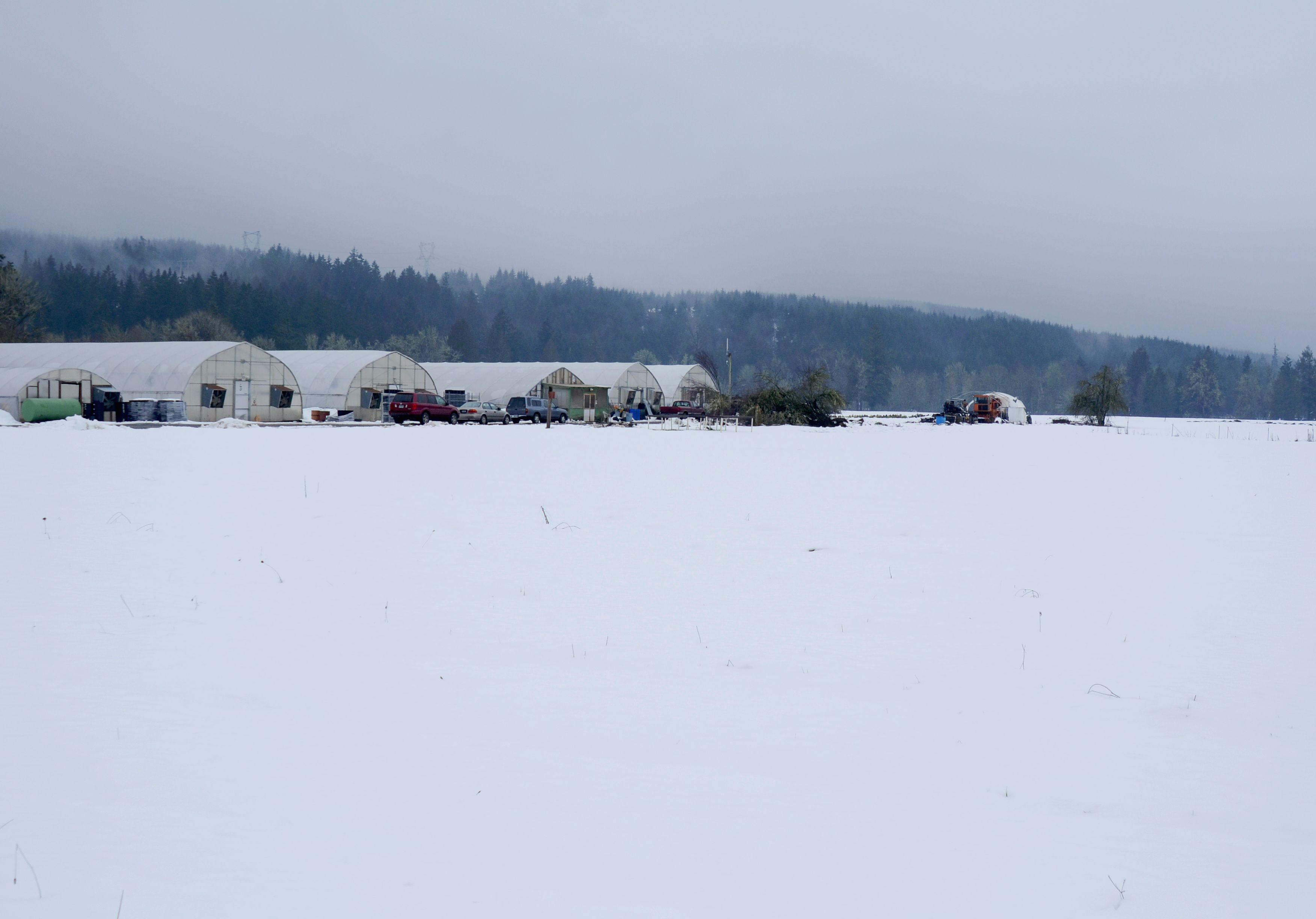 Our Farm This Morning Still Covered In Snow After The Snow
