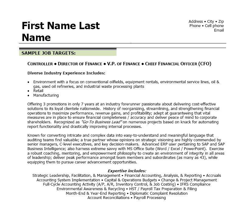Resume Templat Finance Executive Resume Template  Professional Portfolio In's
