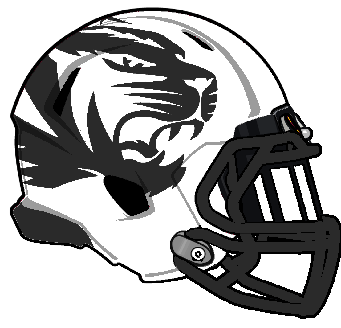 Mizzou Alternate Helmet Football helmets, Helmet