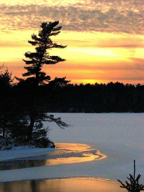 Winter sunset on the lake.