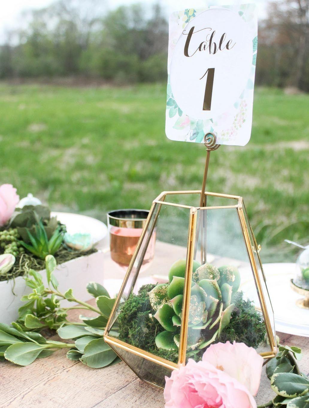 Succulent Wedding Wedding centerpieces diy, Flower