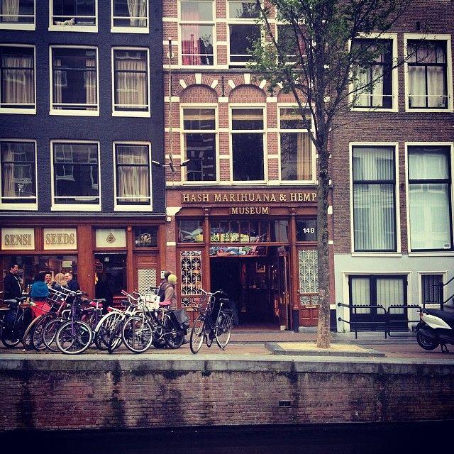 Hash Marihuana Hemp Museum in Amsterdam, Noord-Holland