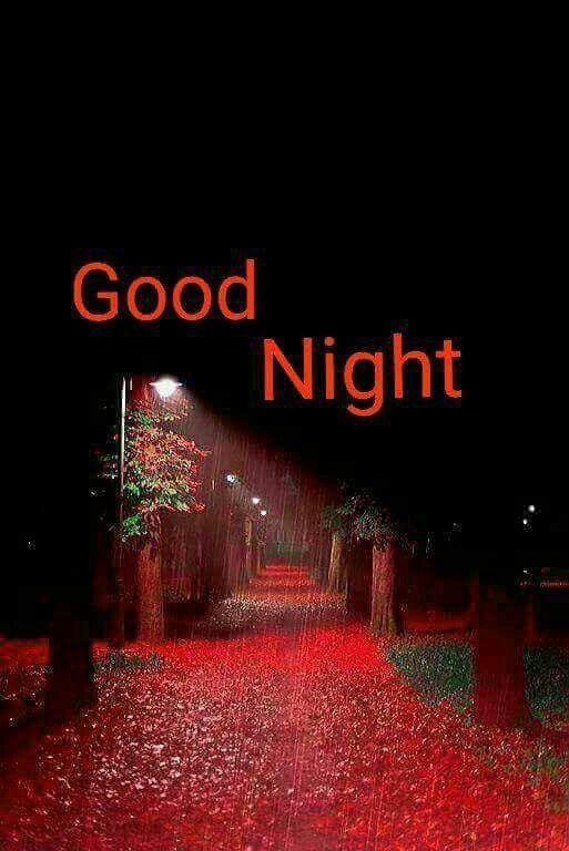 good night my one