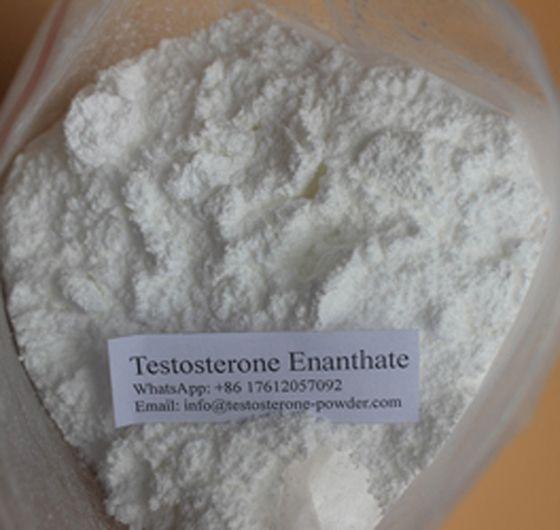 Pin on Buy Testosterone Powder Legal