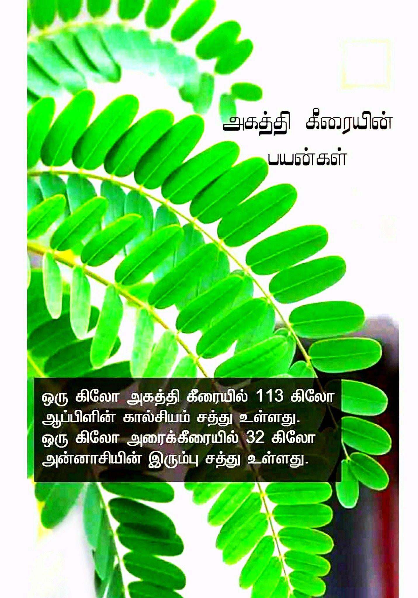Pin by Vasu Chittoor AP SpeedZoneCate on Vasu, Chittoor