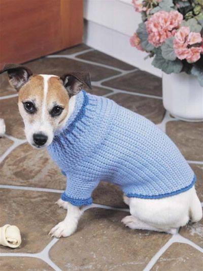 Crochet Accessories - Crochet Gift Patterns - Canine Comfort Dog Sweater